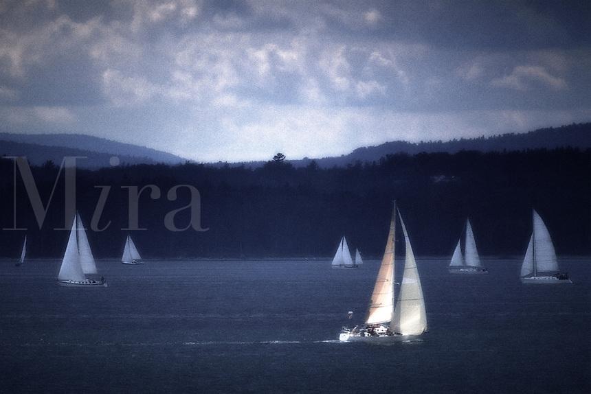 Sailboat Race in Penobscot Bay. Maine