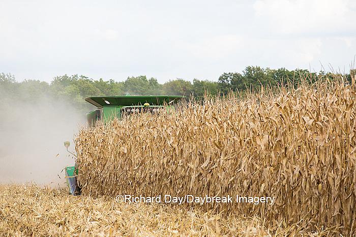 63801-07104 Farmer harvesting corn, Marion Co., IL