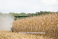 63801-07104 Farmer harvesting corn, Marion Co., IL