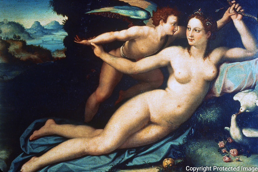 Paintings:  Alessandro Allori--Venus and Cupid. Galleria  Uffizi , Florence.  Reference only.