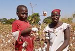 Burkina Faso, organic and fairtrade cotton project /Burkina Faso, Anbau von fairtrade und Biobaumwolle auf Biohof von Farmerin Nana Pauline im Dorf D´apuri bei Ouagadougou