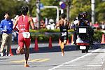 Ryosuke Yamamoto, OCTOBER 13, 2013 - Triathlon : 19th Annual Triathlon National Championships Tokyo Port in Odaiba, Tokyo, Japan. (Photo by AFLO SPORT) [0006]