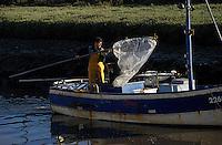 Europe/France/Pays de la Loire/44/Loire-Atlantique/Les Moutiers-en-Retz/Port du Collet: Pêche aux civelles