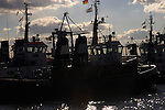 Line of tugboats showing flags moored at Jetty. Hamburg Docks. Germany