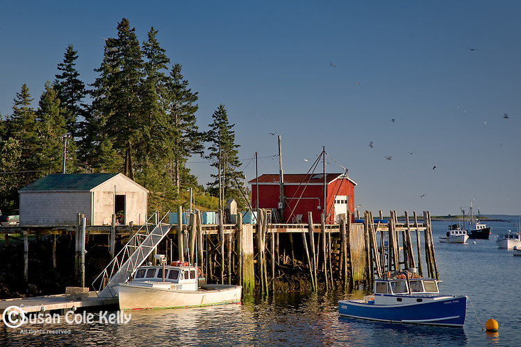 A red fishing shack and bright boats in the fishing village at Port Clyde, ME, USA