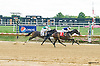 Trulamo winning at Delaware Park on 9/25/15