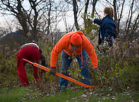 Volunteers clear honeysuckle and other invasive plants from Otterbein Lake in Westerville, Ohio, on a cold winter morning. The once abandoned lake was used as a holding pond for industry.  Photo Copyright Gary Gardiner. Not for reproduction without written permission.