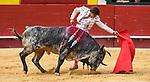 Feria de Julio de Valencia.<br /> Novillada con picadores.<br /> <br /> Novillos de Los Ma&ntilde;os.<br /> <br /> Jes&uacute;s Chover, ovaci&oacute;n, silencio en el que mat&oacute; por S&aacute;nchez y herido.<br /> <br /> &Aacute;ngel S&aacute;nchez, herido.<br /> <br /> Jorge Isiegas, silencio tras tres avisos, ovaci&oacute;n en el que mato por Chover, oreja y silencio.<br /> <br /> 20 de julio de 2017.<br /> <br /> Coso de la Calle Xativa.<br /> Valencia, Valencia - Espa&ntilde;a.