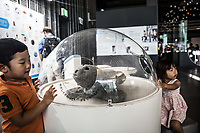 Tokyo- Museo nazionale delle nuove scienze e dell'innovazione - The National Museum of Emerging Science and Innovation (Miraikan)<br />