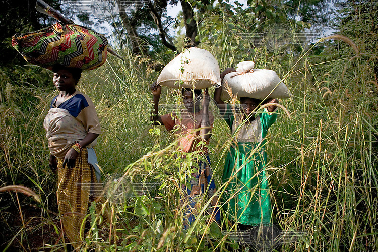 A woman and two young girls carry goods on their heads through the undergrowth to their village.