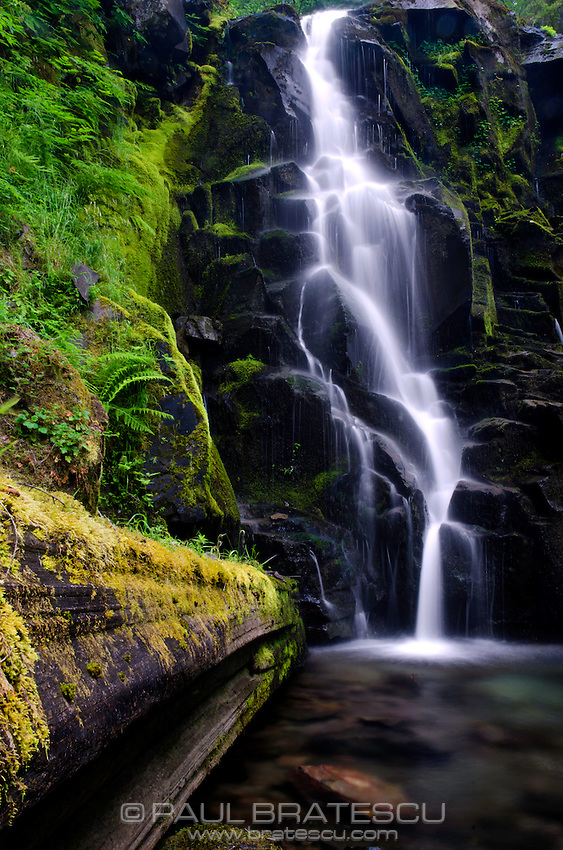 Waterfall, Gifford Pinchot National Park.