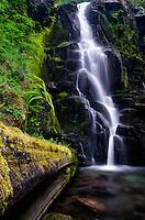 Waterfall, Gifford Pinchot National Park.