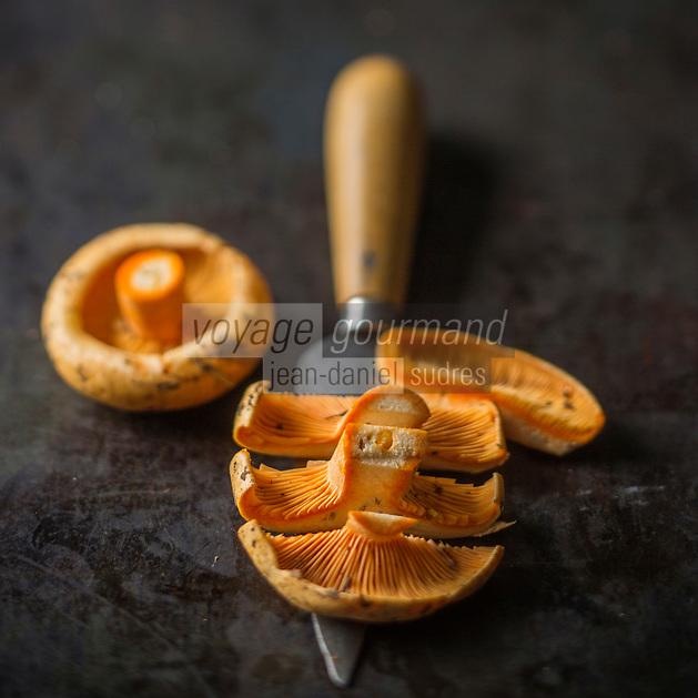 Gastronomie générale, Lactaires délicieux  -  Stylisme : Valérie LHOMME // Gastronomy, Lactarius deliciosus, commonly known as the Saffron milk cap, Red pine mushroom,