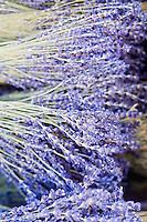 Europe/France/Provence-Alpes-Côte d'Azur/06/Alpes-Maritimes/Nice:  Lavande sur le marché aux fleurs  du Cours Saleya