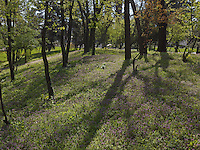 PG_LOCATION_60267