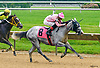 Sisters Bold winning at Delaware Park on 6/5/2017