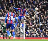 Tottenham Hotspur v Crystal Palace - FA Cup 5th Round - 21/02/2016