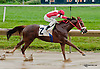Blimey winning at Delaware Park on 7/3/13
