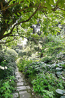 A well-stocked, lush garden with a paved path leading through the foliage plants on either side. The plants, including ferns, hostas and clipped shrubs, provide a contrasting variety of shapes, textures and greens.