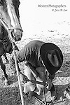 A black and white fine art photograph of a farrier using a rasp on a horses hoof. Cowboy Photos, riding,roping,horseback