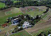 aerial photograph vineyards Benziger winery Sonoma Mountain Sonoma County, California