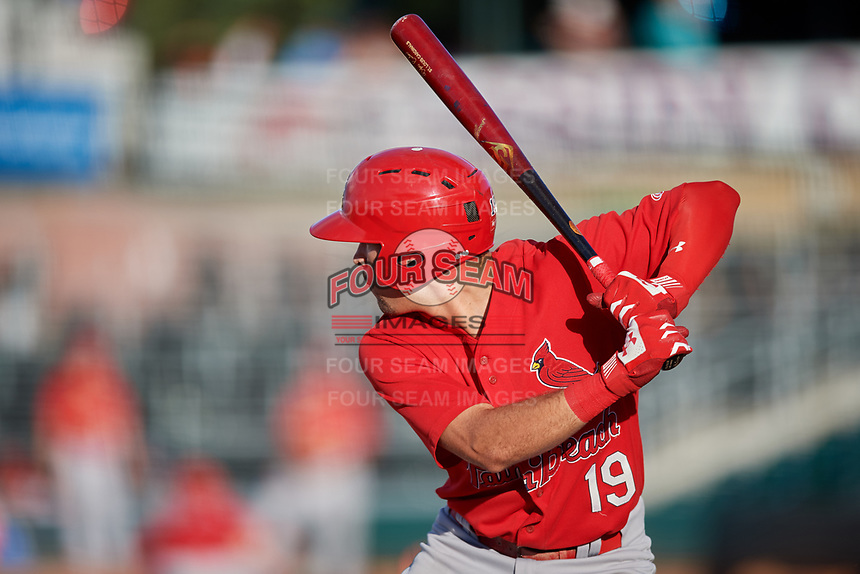 Palm Beach Cardinals designated hitter Dylan Carlson (19) at bat during a game against the Jupiter Hammerheads on August 4, 2018 at Roger Dean Chevrolet Stadium in Jupiter, Florida.  Palm Beach defeated Jupiter 7-6.  (Mike Janes/Four Seam Images)