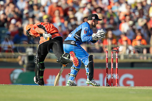 21.12.2015. Perth, Australia. Big Bash Cricket league 05 Perth Scorchers versus Adelaide Strikers. Nathan Coulter-Nile makes his ground on the last run of the Scorchers innings.