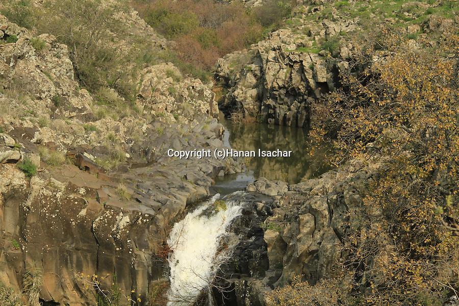 Golan Heights, Zavitan waterfall at Yehudiya Forest Nature Reserve