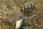 Golan Heights, Zavitan waterfall at Yehudiya Forest Nature Reserve