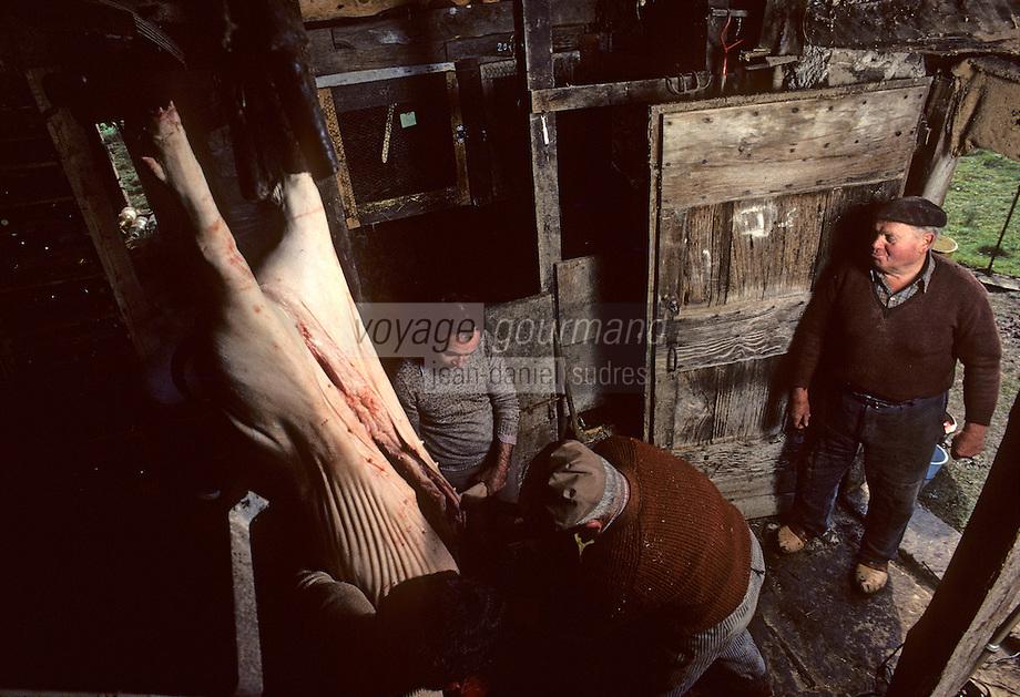 Europe/France/Midi-Pyr&eacute;n&eacute;es/09/Ari&egrave;ge/Vall&eacute;e de l'Ari&egrave;ge/Serres-sur-Arget&nbsp;: Mort du cochon<br /> PHOTO D'ARCHIVES // ARCHIVAL IMAGES<br /> FRANCE 1980