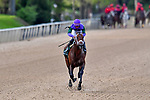 HOT SPRINGS, AR - APRIL 14:Arkansas Derby . Oaklawn Park on April 14, 2018 in Hot Springs,Arkansas. #6 Magnum Moon with jockey Luis Saez (Photo by Ted McClenning/Eclipse Sportswire/Getty Images)