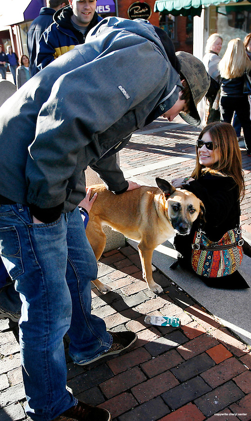 Good samaritans including, left to right, Caleb Revak of Kittery, Chad Heilmann of Portsmouth and Sharon Holm of Boylston, MA, tend to a stray dog in downtown Portsmouth, N.H., Saturday, Nov. 29, 2008 (Portsmouth Herald Photo/Cheryl Senter)