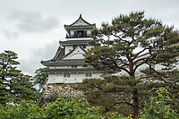 Kochi Castle is one of just twelve Japanese castles to have survived the fires, wars and other catastrophes of the post feudal age.
