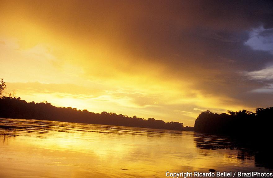 Sunset in Amazon rainforest, golden light over magnificent river, Brazil.