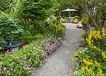 Vashon-Maury Island, WA: Perennials in a cottage garden