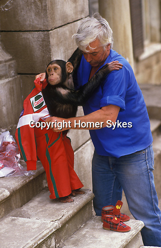 Chimp dressed up by his British handlers in preparation for a TV commercial advertising shoot. Rome Italy 1980s