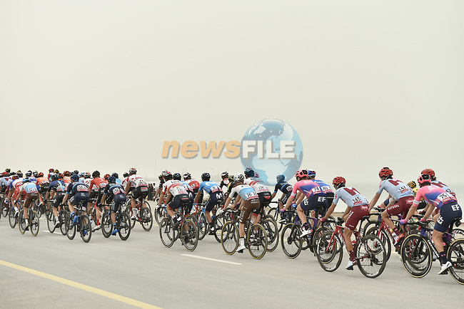 The peloton during Stage 6 of the 2019 UAE Tour, running 175km form Ajman to Jebel Jais, Dubai, United Arab Emirates. 1st March 2019.<br /> Picture: LaPresse/Fabio Ferrari | Cyclefile<br /> <br /> <br /> All photos usage must carry mandatory copyright credit (© Cyclefile | LaPresse/Fabio Ferrari)