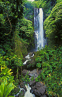 Wailua falls off the road to Hana, island of Maui