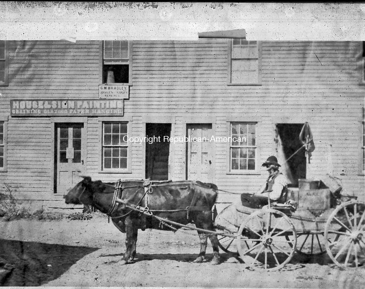 Frederick Stone negative. Mr. Hall with bull used as a horse. Undated photo.