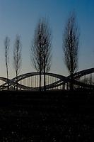 Winter trees against the Elbbruecken ( largest bridge in Hamburg) Hamburg, Germany.