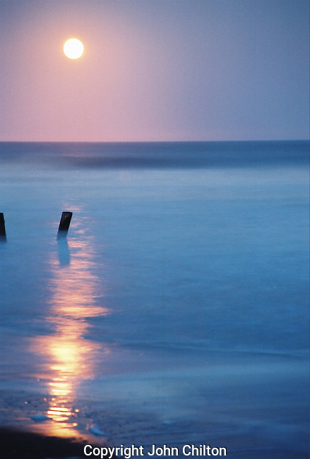 Photo of the moon rising over Folly Beach, SC.