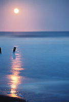 Photo of the moon rising over Folly Beach, SC.