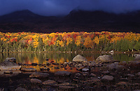 Sunlight on Fall Foliage reflecting in Sandy Stream Pond, with the North Basins in the background, BSP, Maine. .. Restrictions  Sunlight on Fall Foliage reflecting in Sandy Stream Pond, with the North Basins in the background, BSP, Maine. .. Restrictions
