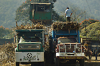 Photographs in this gallery show American Sugar Refinery in Veracruz, Mexico, San Nicolás.  Demonstrating trailer trucks bring in filled tons of sugarcane from harvest cane fields from Cuichapa mountainsides. Moreover, establishing systematic process in turning it into quality refined sugar.