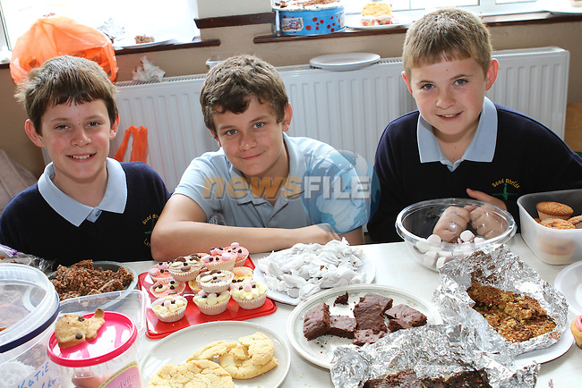Sean Matthews, Luke O' Reilly and Jamie Kelly at the Cake Sale in Scoil Bhride NS, Dunleer....Photo NEWSFILE/Jenny Matthews.