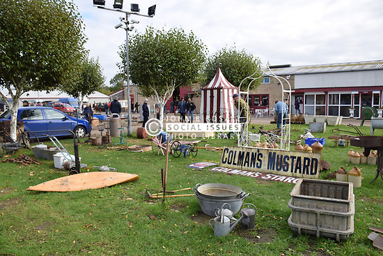 Diss Auction Rooms - sale of architectural salvage and garden items. Norfolk
