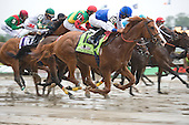 BELMONT STAKES DAY 6/11/11 - COMPLETE