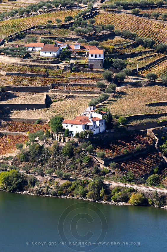 douro river and steep vineyards quinta das sopas douro portugal