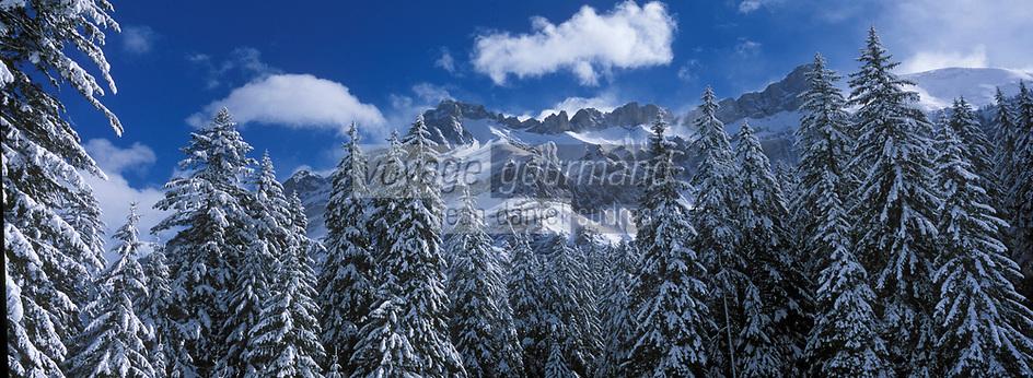 Europe/Suisse/Env Gstaad/Col du Pillon: Foret enneigée et sommets