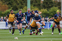 Charlie Ingall of London Scottish during the Greene King IPA Championship match between London Scottish Football Club and Ealing Trailfinders at Richmond Athletic Ground, Richmond, United Kingdom on 8 September 2018. Photo by David Horn.